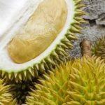 Le durian, ce fruit d'Asie du Sud-Est