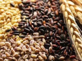 Céréales complètes