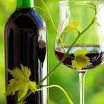 Le vin bio séduit les fines bouches