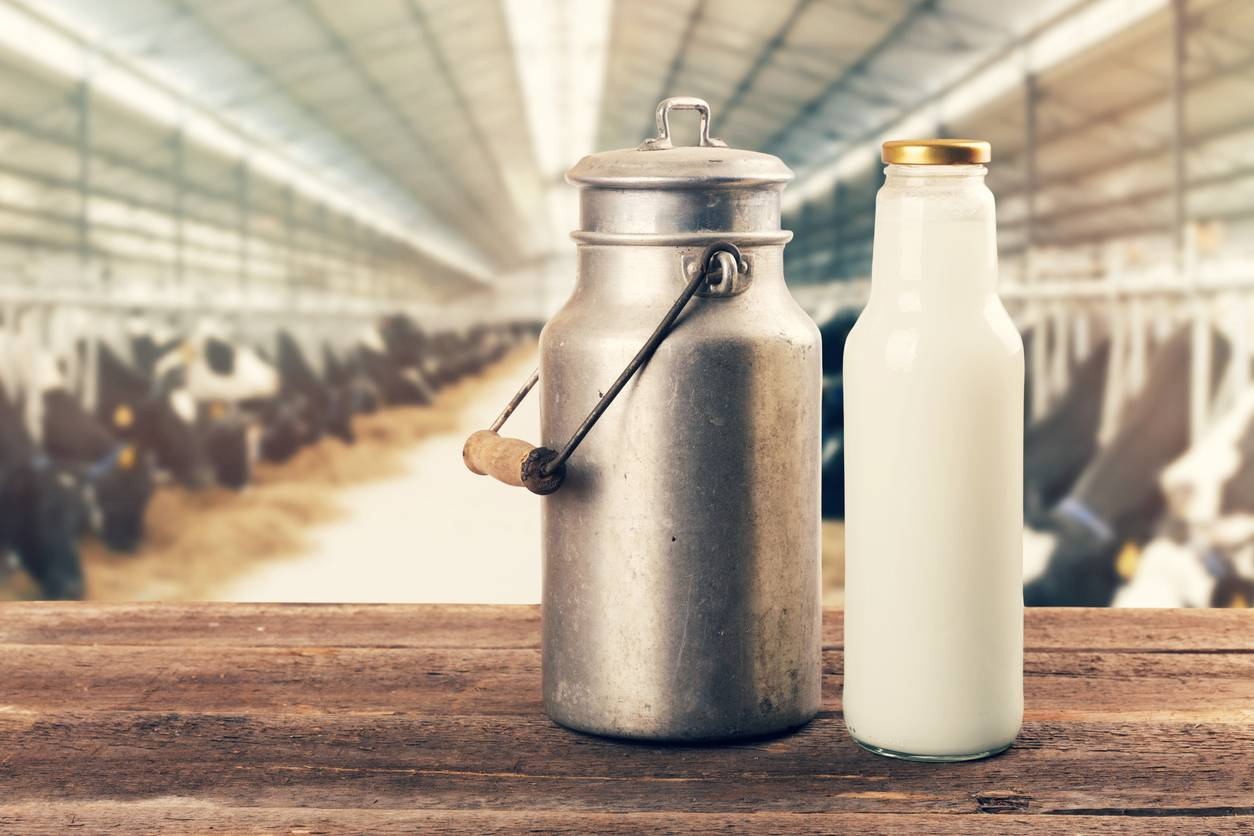 Un bidon de lait
